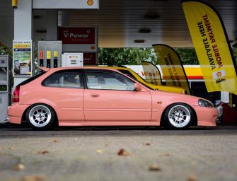 WORKERS WHIPS – DAVES CIVIC